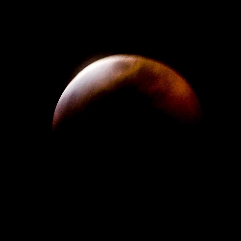 Lunar-Eclipse-Jan-20-2019-20190120-214038-0042-593.jpg