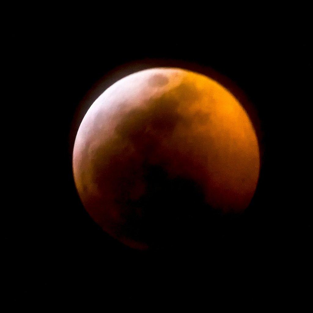 Lunar-Eclipse-Jan-20-2019-20190120-214712-0048-594.jpg